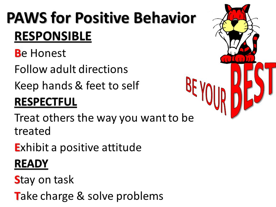 PAWS for Positive Behavior RESPONSIBLE B Be Honest Follow adult directions Keep hands & feet to selfRESPECTFUL Treat others the way you want to be treated E Exhibit a positive attitudeREADY S Stay on task T Take charge & solve problems