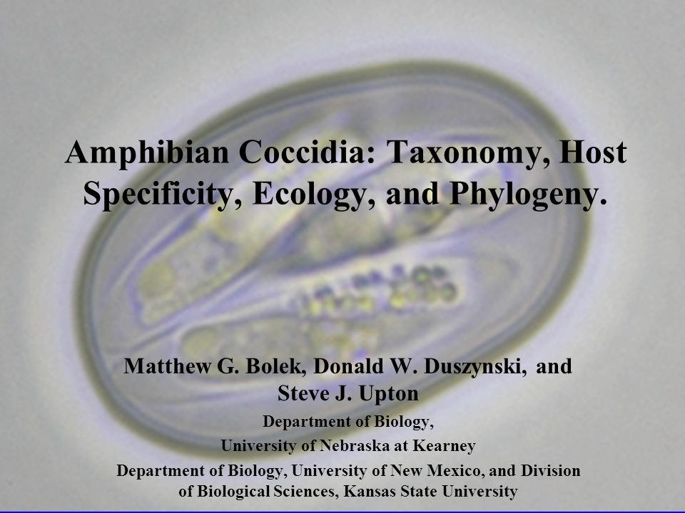 18 species of Eimeria, 2 species of Goussia, 1 species of Hyaloklossia and 9 species of Isospora have been described.