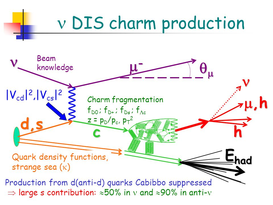 c |V cd | 2,|V cs | 2 d,s ----  Beam knowledge Quark density functions, strange sea (  ) ,h E had h Charm fragmentation f D0 ; f D+ ; f Ds ; f  c z = p D /p c, p T 2 DIS charm production Production from d(anti-d) quarks Cabibbo suppressed  large s contribution:  50% in and  90% in anti-