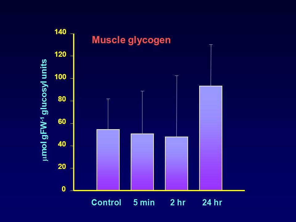 0 20 40 60 80 100 120 140 Control5 min2 hr24 hr Muscle glycogen  mol gFW -1 glucosyl units