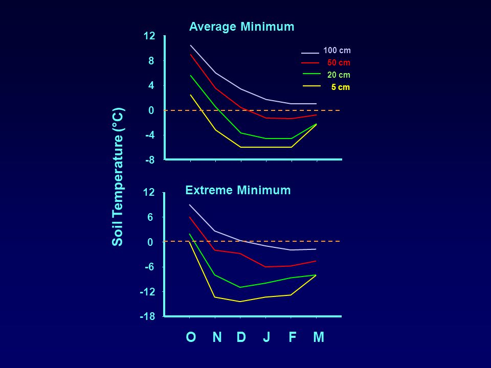 -8 -4 0 4 8 12 100 cm 50 cm 20 cm 5 cm ONDJFM -18 -12 -6 0 6 12 Soil Temperature (°C) Average Minimum Extreme Minimum