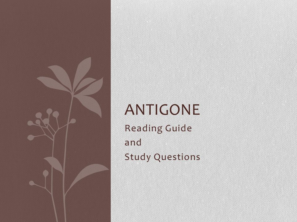 Reading Guide and Study Questions ANTIGONE