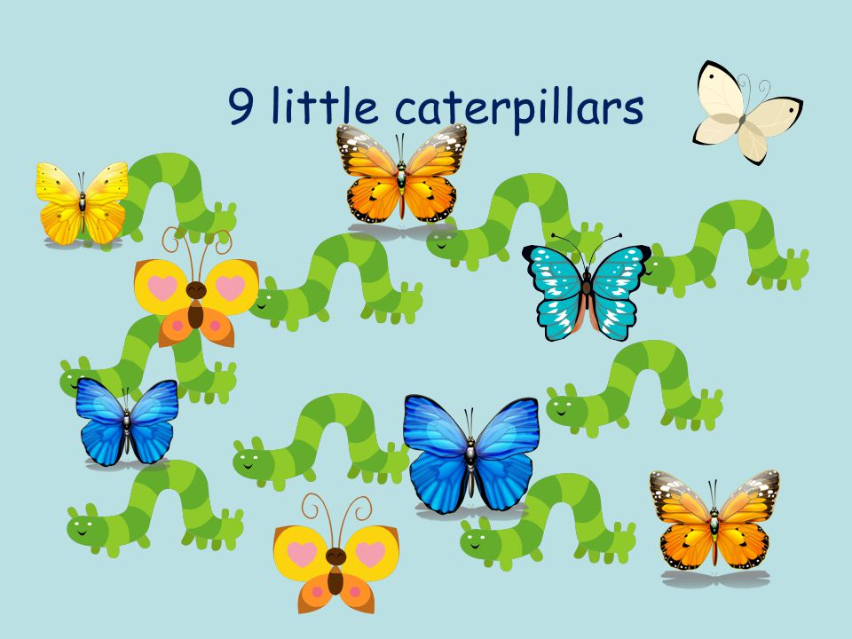 9 little caterpillars
