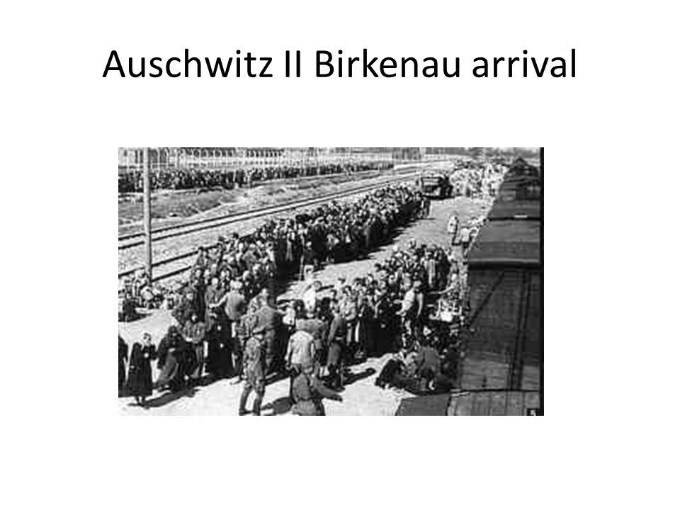 Auschwitz II Birkenau arrival
