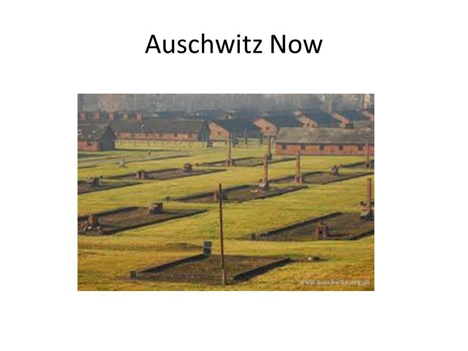 Auschwitz Now