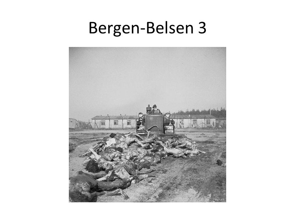 Bergen-Belsen 3