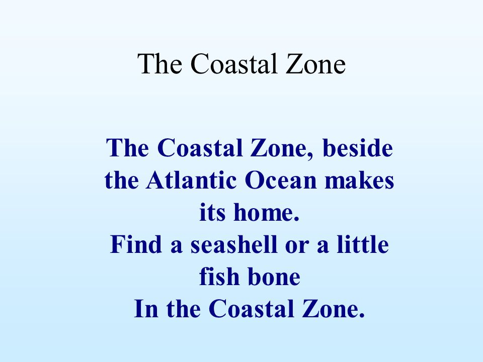 The Coastal Zone The Coastal Zone, beside the Atlantic Ocean makes its home. Find a seashell or a little fish bone In the Coastal Zone.