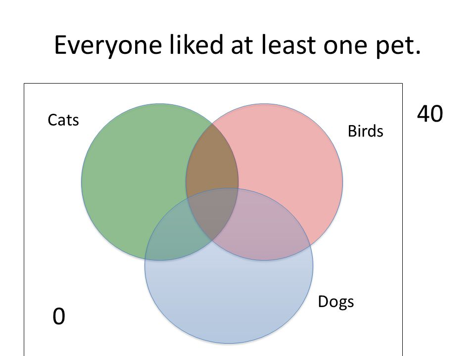 Everyone liked at least one pet. 0 Dogs Birds Cats 40