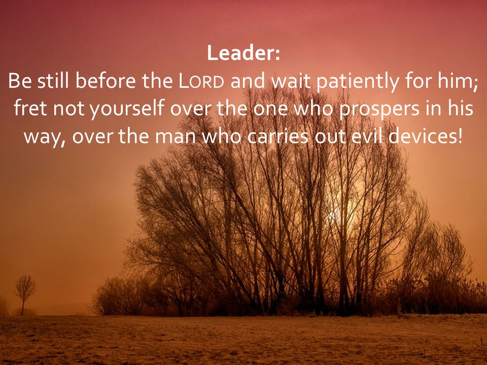 Leader: Be still before the L ORD and wait patiently for him; fret not yourself over the one who prospers in his way, over the man who carries out evi