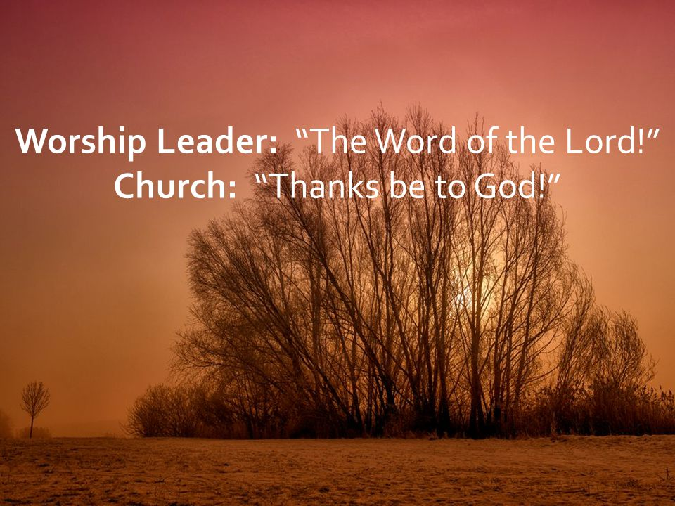 """Worship Leader: """"The Word of the Lord!"""" Church: """"Thanks be to God!"""""""