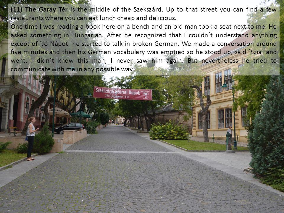 (11) The Garáy Tér is the middle of the Szekszárd.