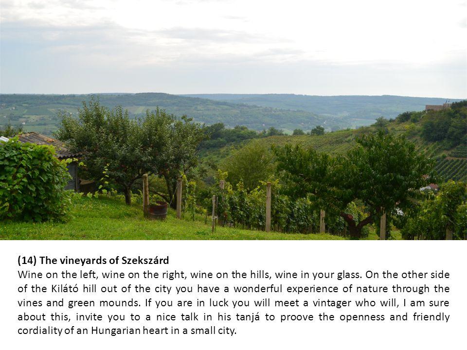 (14) The vineyards of Szekszárd Wine on the left, wine on the right, wine on the hills, wine in your glass.
