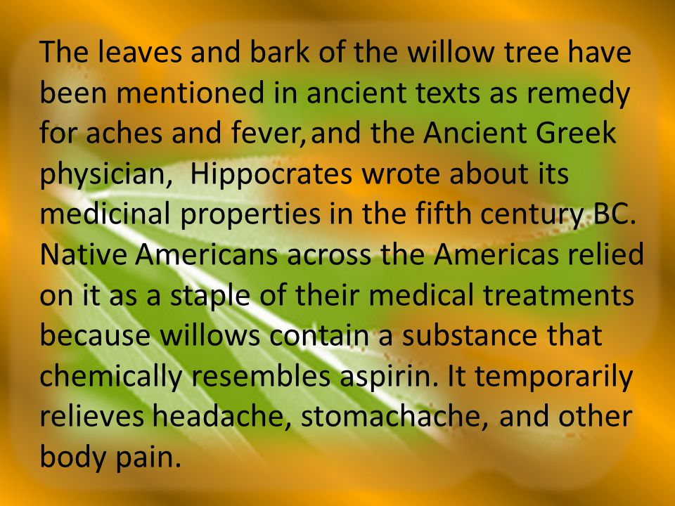 The leaves and bark of the willow tree have been mentioned in ancient texts as remedy for aches and fever, and the Ancient Greek physician, Hippocrate