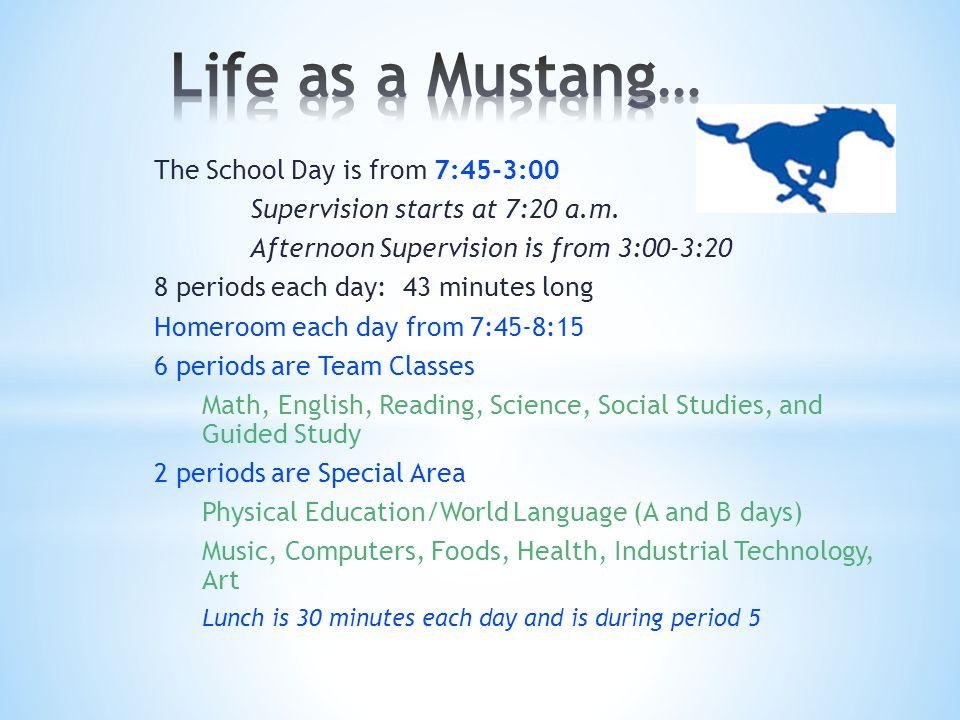 7:45-8:15Homeroom 8:19-9:02Team Classes 9:06-9:49Team Classes 9:53-10:36Team Classes 10:40-11:23Special Area Classes 11:27-12:40Team Classes (Lunch) 12:44-1:27Special Area Classes 1:31-2:13Team Classes 2:17-3:00Team Classes