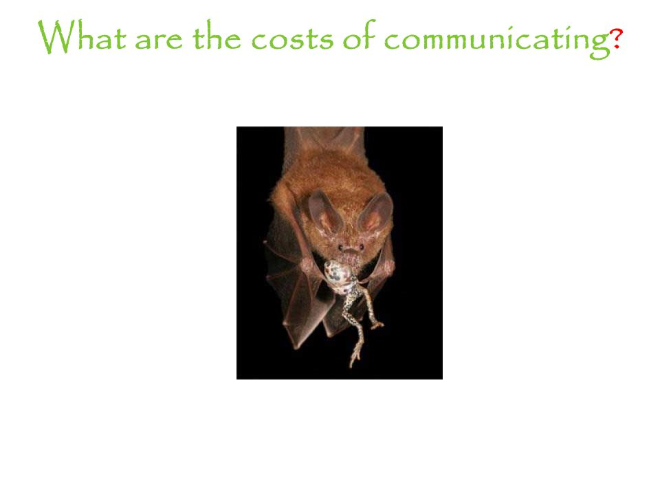 What are the costs of communicating?