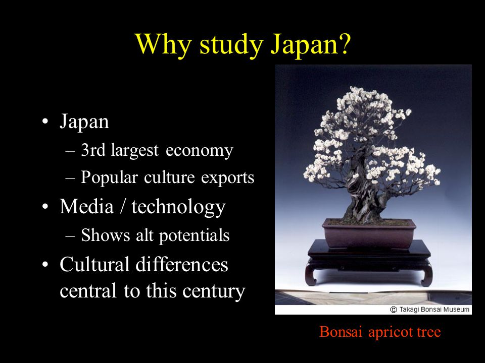 Why study Japan.