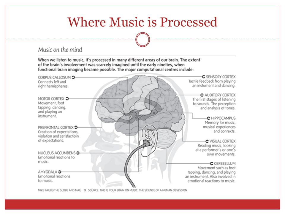 Where Music is Processed