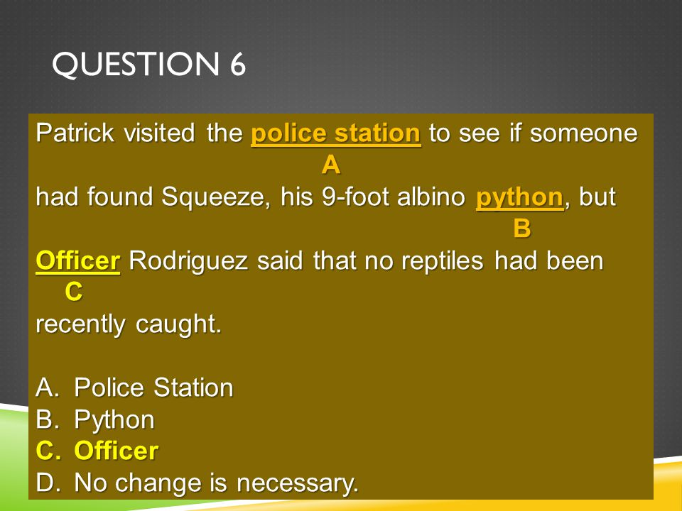 QUESTION 6 Patrick visited the police station to see if someone had found Squeeze, his 9-foot albino python, but officer Rodriguez said that no reptiles had been recently caught.