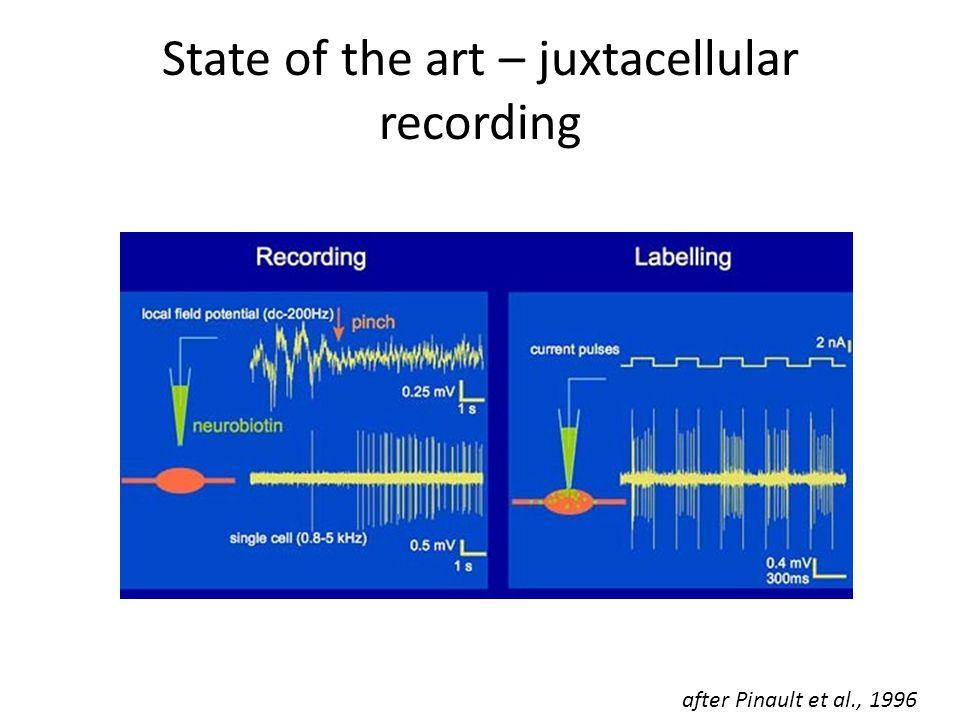 State of the art – juxtacellular recording after Pinault et al., 1996