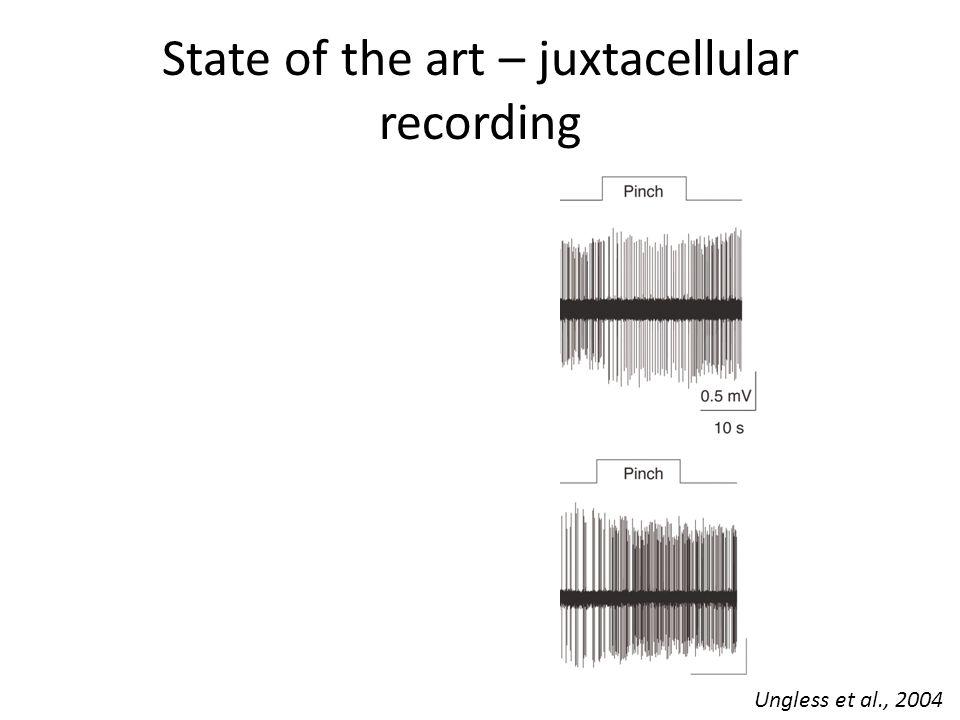 State of the art – juxtacellular recording Ungless et al., 2004