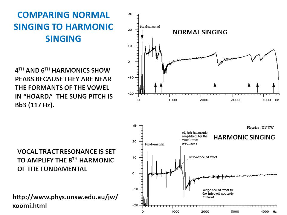 COMPARING NORMAL SINGING TO HARMONIC SINGING NORMAL SINGING HARMONIC SINGING 4 TH AND 6 TH HARMONICS SHOW PEAKS BECAUSE THEY ARE NEAR THE FORMANTS OF THE VOWEL IN HOARD. THE SUNG PITCH IS Bb3 (117 Hz).