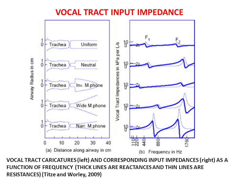 VOCAL TRACT INPUT IMPEDANCE VOCAL TRACT CARICATURES (left) AND CORRESPONDING INPUT IMPEDANCES (right) AS A FUNCTION OF FREQUENCY (THICK LINES ARE REAC