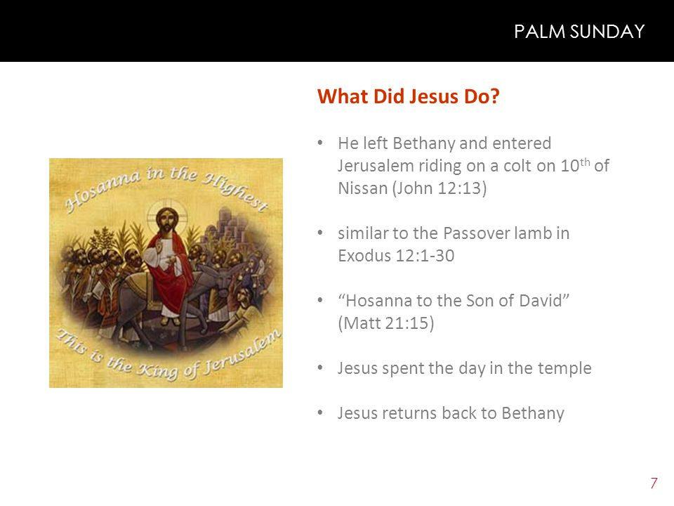 6 PALM SUNDAY Theme: Jesus is entering into Jerusalem (my heart) as a king