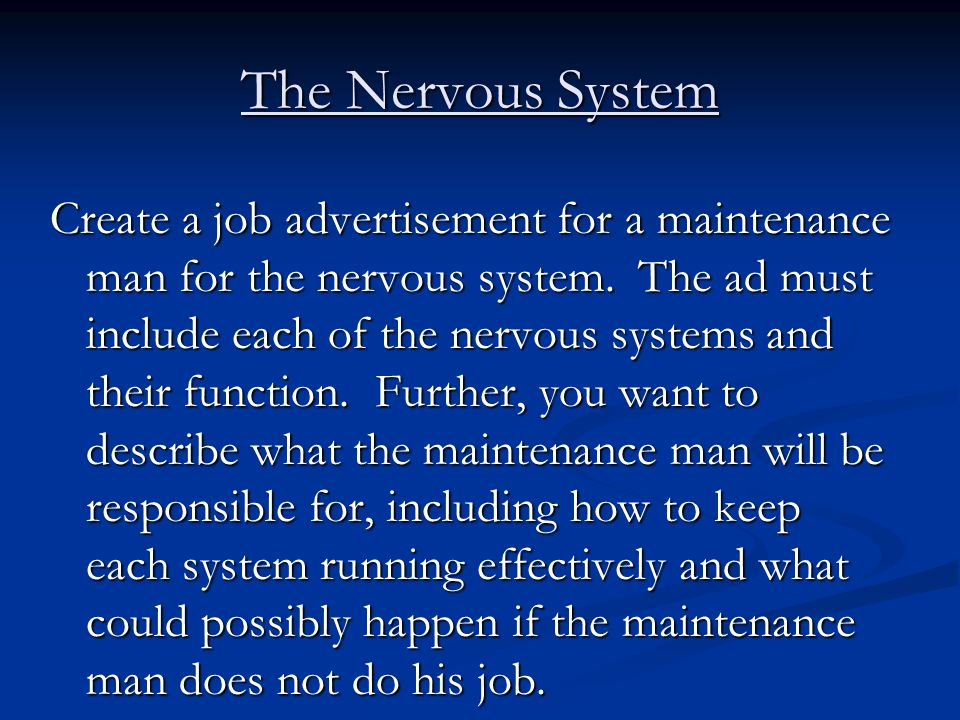 The Nervous System Create a job advertisement for a maintenance man for the nervous system. The ad must include each of the nervous systems and their