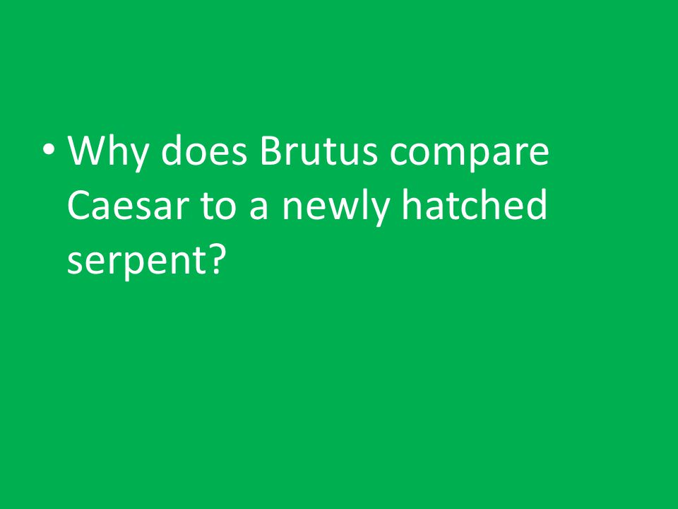 Why does Brutus compare Caesar to a newly hatched serpent