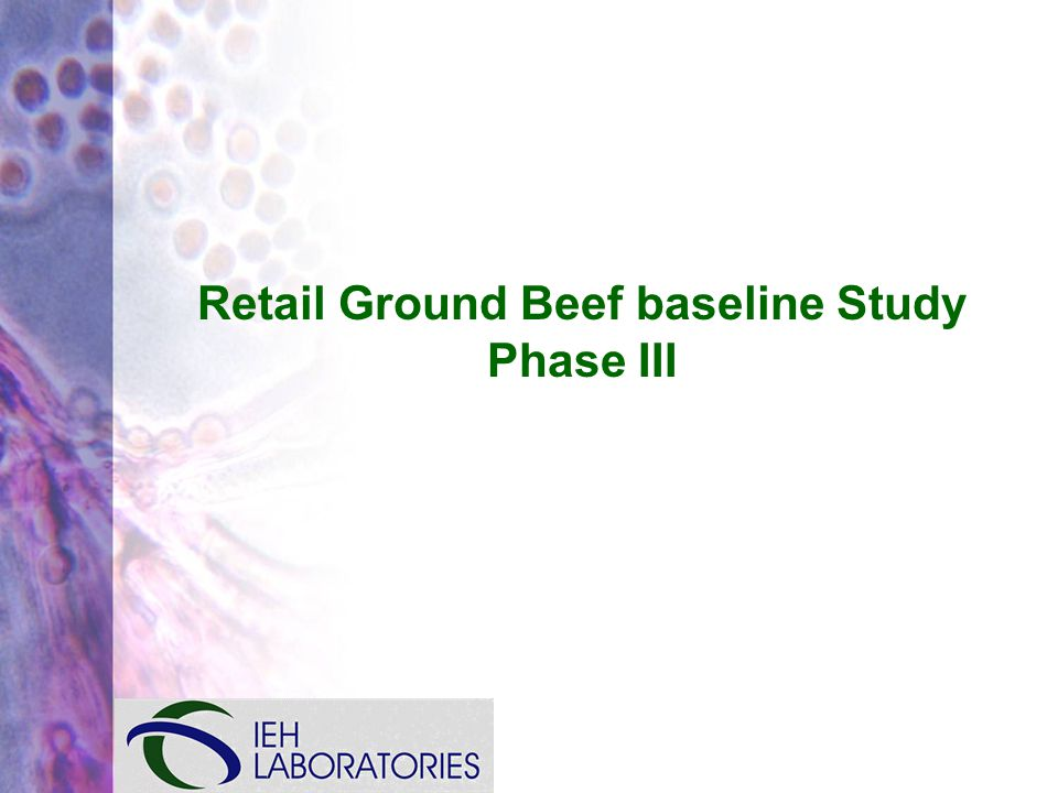 Retail Ground Beef baseline Study Phase III