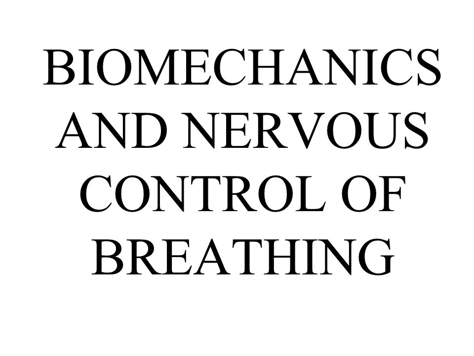 BIOMECHANICS AND NERVOUS CONTROL OF BREATHING