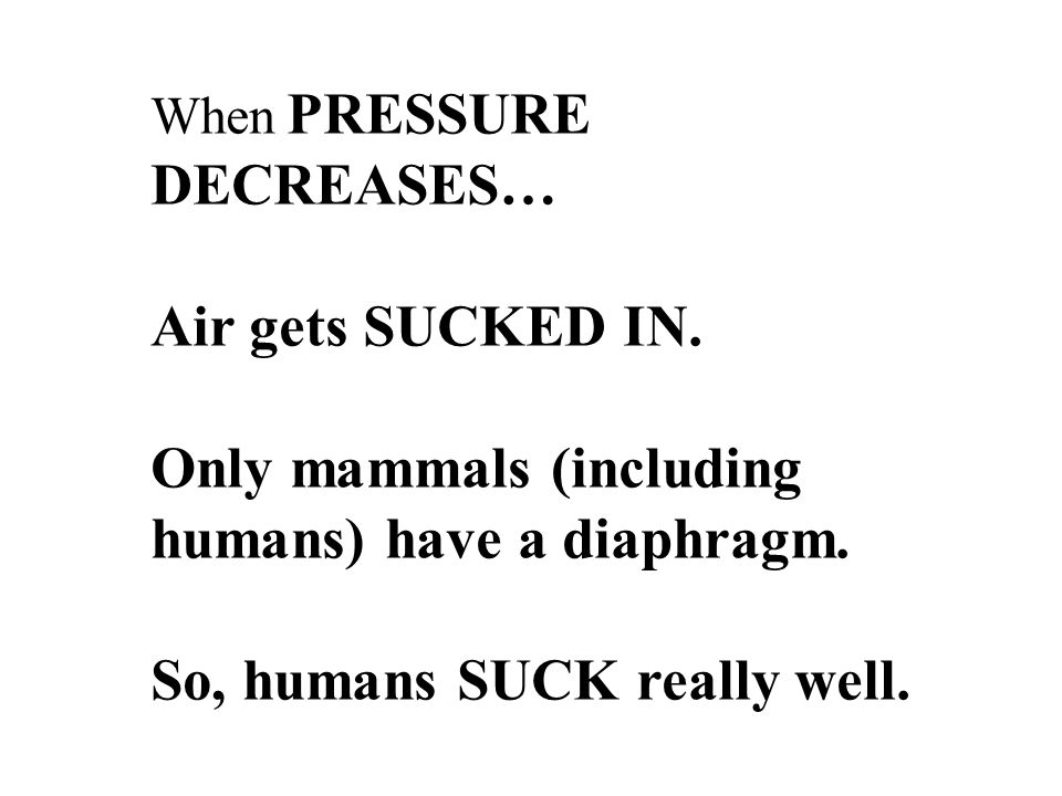 When PRESSURE DECREASES… Air gets SUCKED IN. Only mammals (including humans) have a diaphragm.