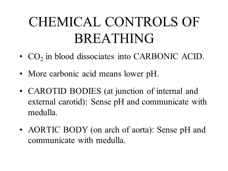 CHEMICAL CONTROLS OF BREATHING CO 2 in blood dissociates into CARBONIC ACID.