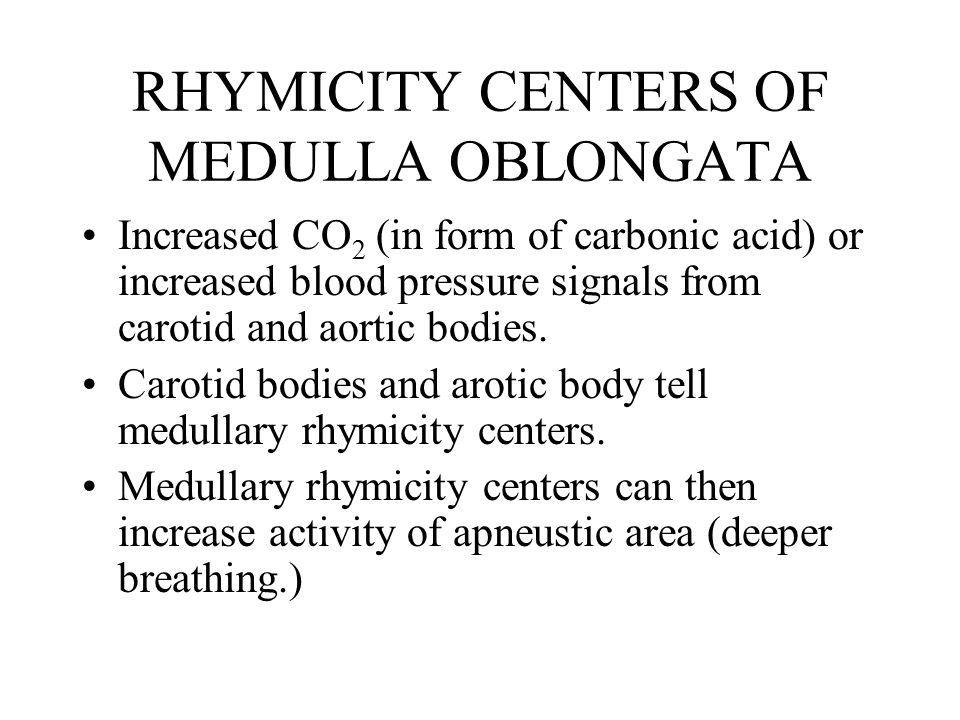 RHYMICITY CENTERS OF MEDULLA OBLONGATA Increased CO 2 (in form of carbonic acid) or increased blood pressure signals from carotid and aortic bodies.