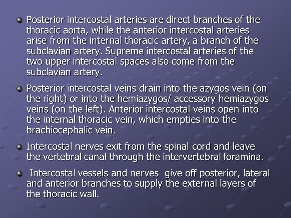 Posterior intercostal arteries are direct branches of the thoracic aorta, while the anterior intercostal arteries arise from the internal thoracic art