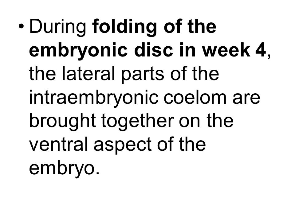 During folding of the embryonic disc in week 4, the lateral parts of the intraembryonic coelom are brought together on the ventral aspect of the embry