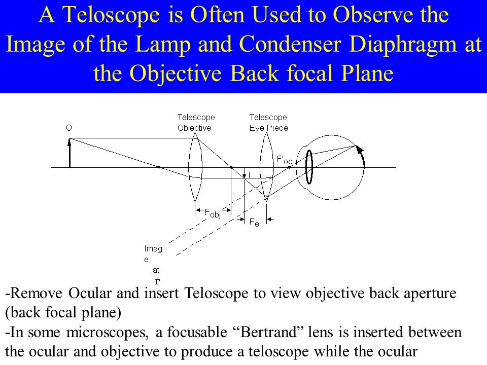 A Teloscope is Often Used to Observe the Image of the Lamp and Condenser Diaphragm at the Objective Back focal Plane -Remove Ocular and insert Telosco
