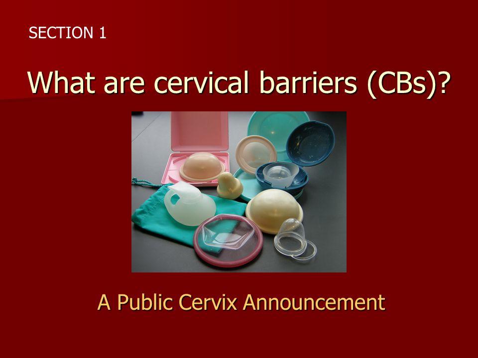 A Public Cervix Announcement What are cervical barriers (CBs)? SECTION 1