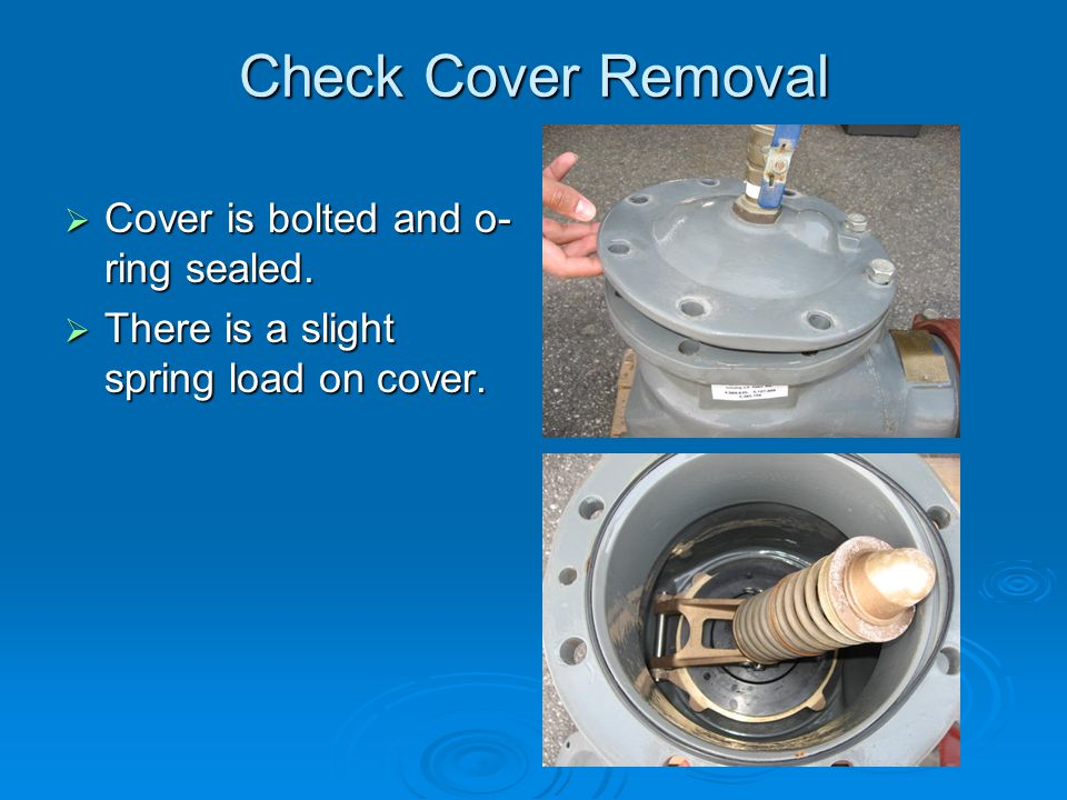 Check Cover Removal  Cover is bolted and o- ring sealed.  There is a slight spring load on cover.