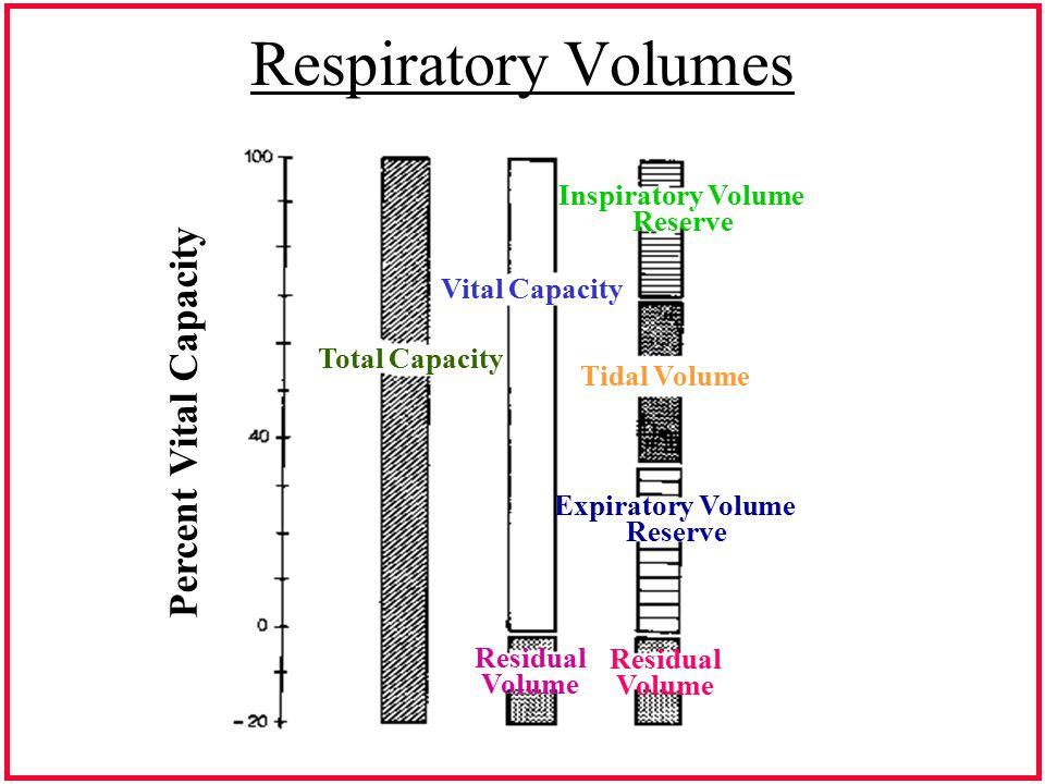 Respiratory Volumes Total Capacity Vital Capacity Residual Volume Inspiratory Volume Reserve Tidal Volume Expiratory Volume Reserve Residual Volume Pe
