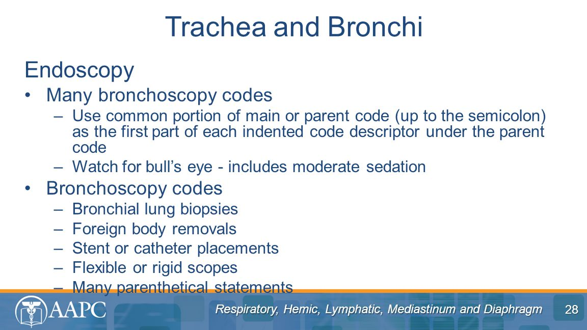 Respiratory, Hemic, Lymphatic, Mediastinum and Diaphragm Endoscopy Many bronchoscopy codes –Use common portion of main or parent code (up to the semicolon) as the first part of each indented code descriptor under the parent code –Watch for bull's eye - includes moderate sedation Bronchoscopy codes –Bronchial lung biopsies –Foreign body removals –Stent or catheter placements –Flexible or rigid scopes –Many parenthetical statements Trachea and Bronchi 28