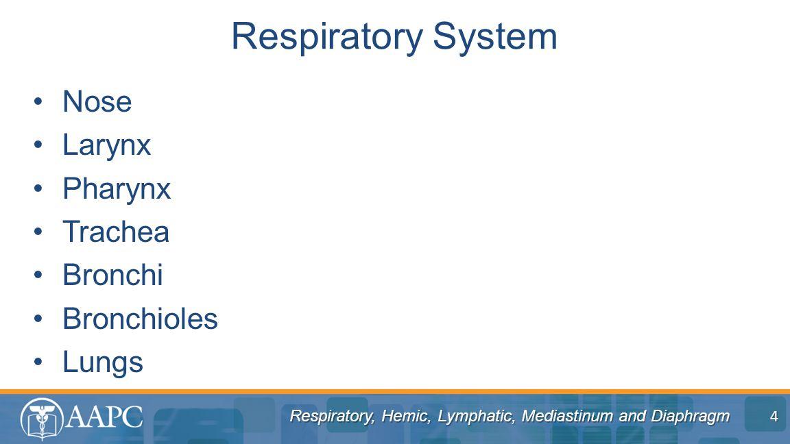 Respiratory, Hemic, Lymphatic, Mediastinum and Diaphragm Nose Larynx Pharynx Trachea Bronchi Bronchioles Lungs Respiratory System 4