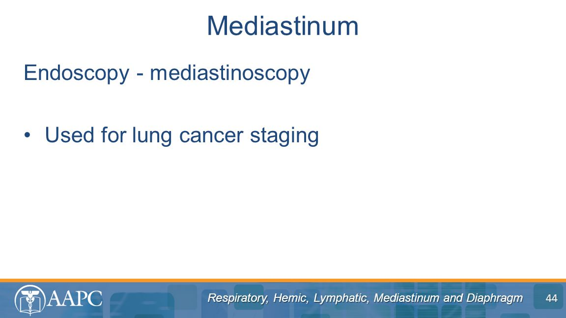 Respiratory, Hemic, Lymphatic, Mediastinum and Diaphragm Endoscopy - mediastinoscopy Used for lung cancer staging Mediastinum 44
