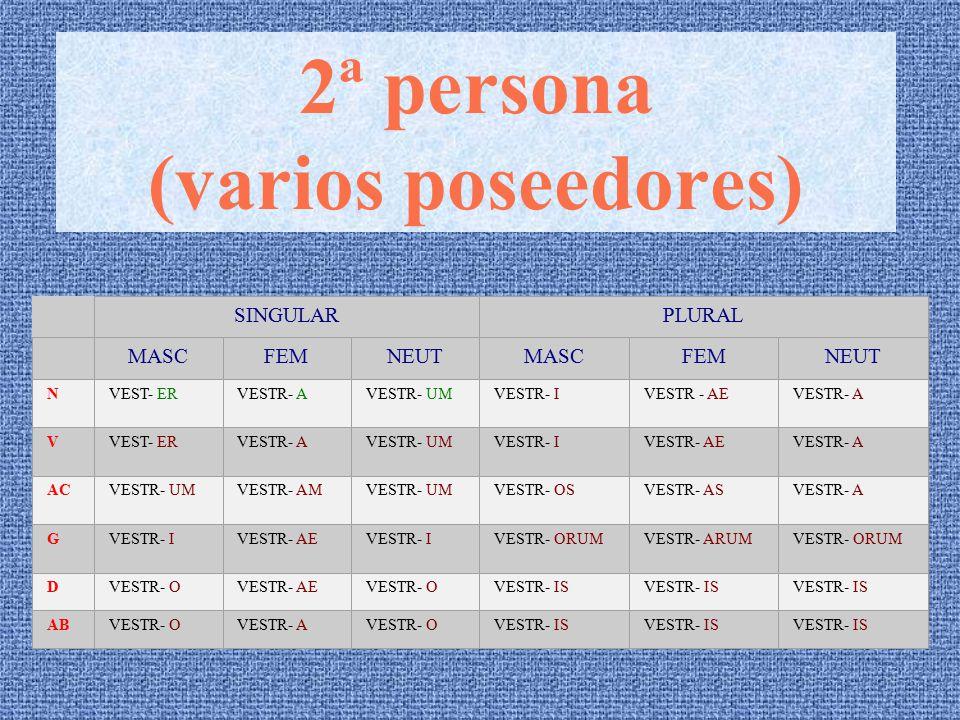 1ª persona (varios poseedores) SINGULARPLURAL MASCFEMNEUTMASCFEMNEUT N NOST- ER NOSTR- A NOSTR- UMNOSTR- INOSTR - AENOSTR- A V NOST- ER NOSTR- A NOSTR- UMNOSTR- INOSTR- AENOSTR- A AC NOSTR- UM NOSTR- AM NOSTR- UMNOSTR- OSNOSTR- ASNOSTR- A G NOSTR- I NOSTR- AE NOSTR- INOSTR- ORUMNOSTR- ARUMNOSTR- ORUM D NOSTR- O NOSTR- AE NOSTR- ONOSTR- IS AB NOSTR- O NOSTR- A NOSTR- ONOSTR- IS