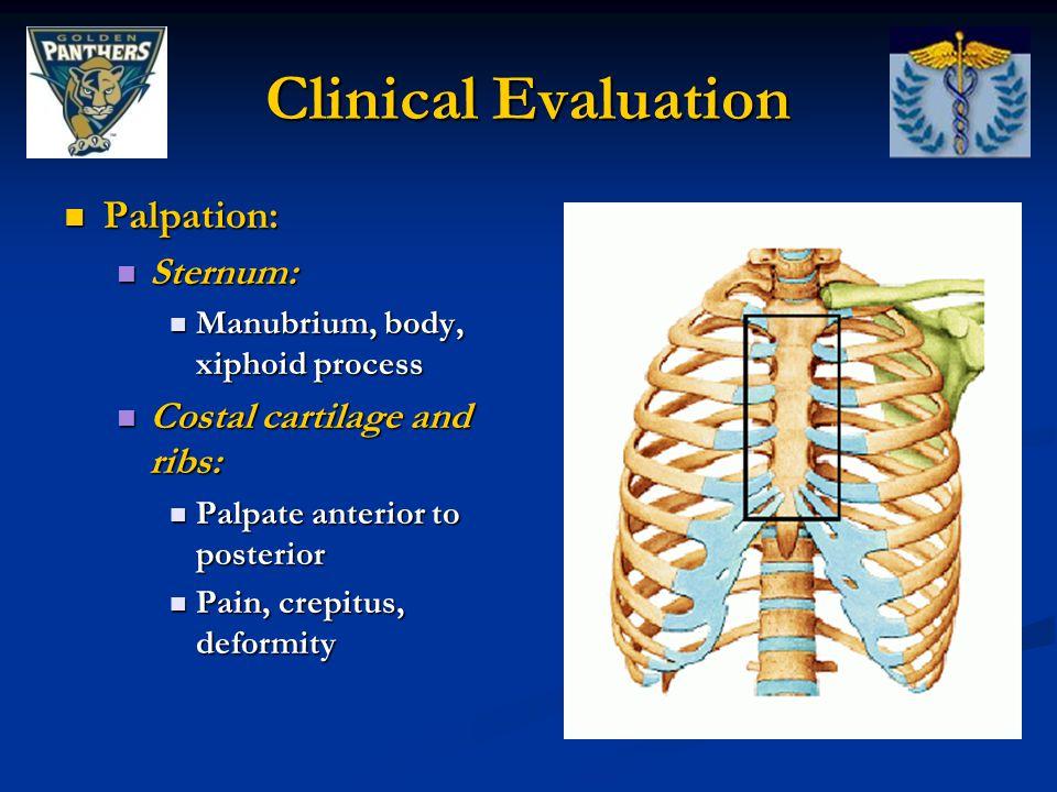 Clinical Evaluation Palpation: Palpation: Sternum: Sternum: Manubrium, body, xiphoid process Manubrium, body, xiphoid process Costal cartilage and rib