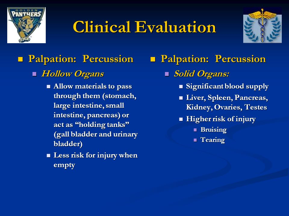 Clinical Evaluation Palpation: Percussion Palpation: Percussion Hollow Organs Hollow Organs Allow materials to pass through them (stomach, large intestine, small intestine, pancreas) or act as holding tanks (gall bladder and urinary bladder) Allow materials to pass through them (stomach, large intestine, small intestine, pancreas) or act as holding tanks (gall bladder and urinary bladder) Less risk for injury when empty Less risk for injury when empty Palpation: Percussion Solid Organs: Significant blood supply Liver, Spleen, Pancreas, Kidney, Ovaries, Testes Higher risk of injury Bruising Tearing
