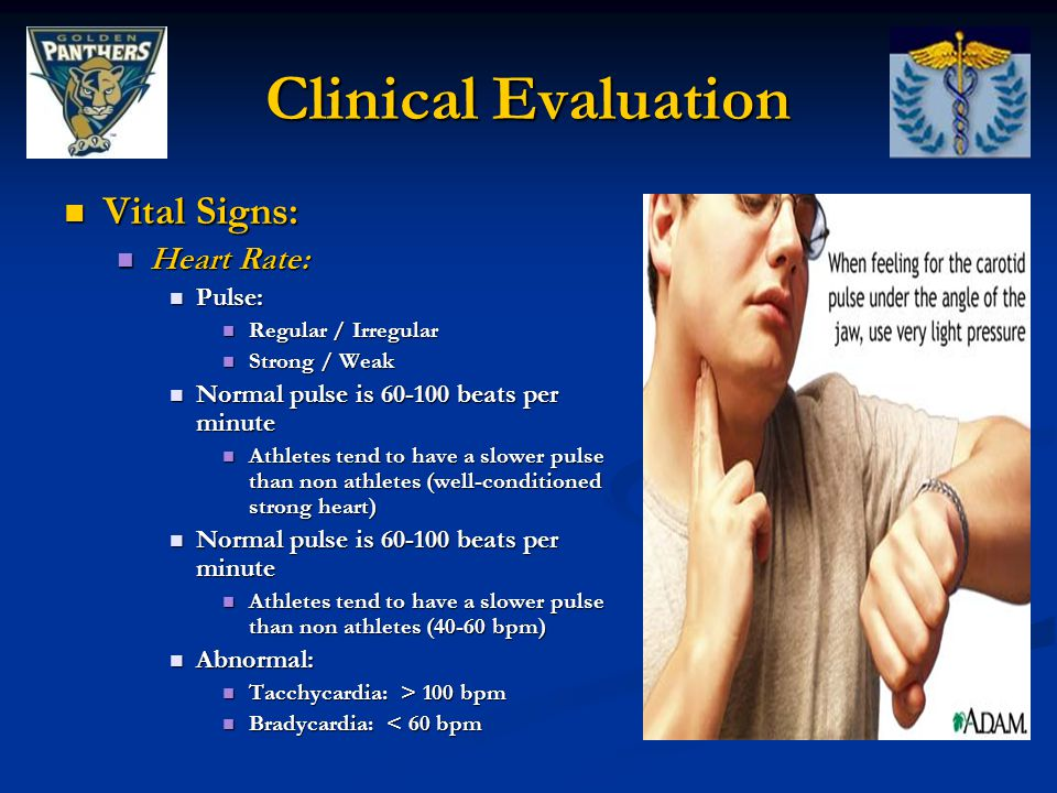 Clinical Evaluation Vital Signs: Vital Signs: Heart Rate: Heart Rate: Pulse: Pulse: Regular / Irregular Regular / Irregular Strong / Weak Strong / Wea
