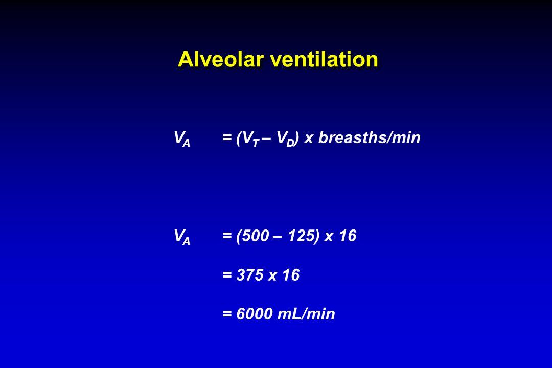 Alveolar ventilation V A = (V T – V D ) x breasths/min V A = (500 – 125) x 16 = 375 x 16 = 6000 mL/min