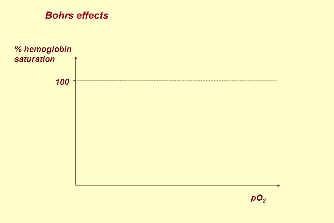 % hemoglobin saturation 100 pO 2 Bohrs effects