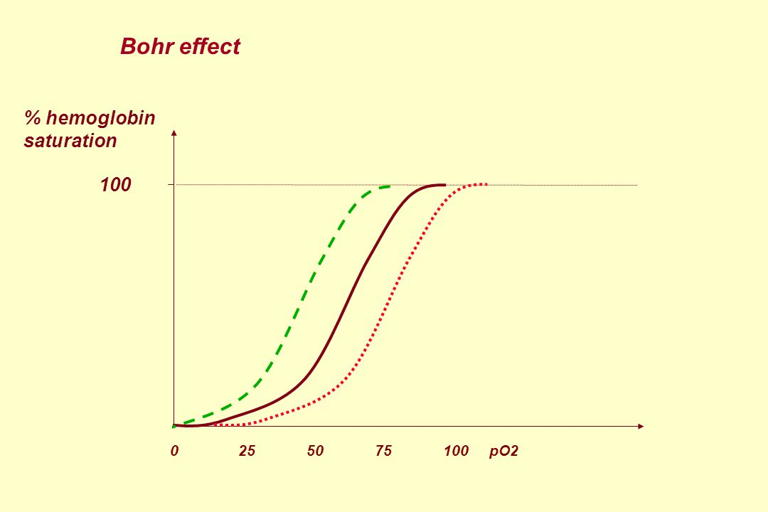 % hemoglobin saturation 100 Bohr effect 0 25 5075 100 pO2